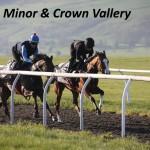 Cirrus Minor & Crown Vallery (6)