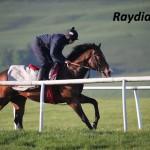 Raydiance (5)
