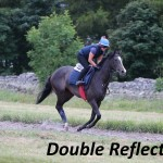 Double Reflection (10)