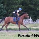Parallel World (11)