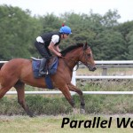 Parallel World (4)