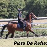 Piste De Feflexion (2)