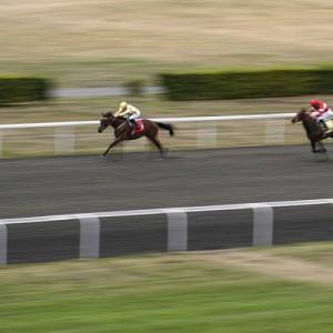 Hollie+Doyle+Quiet+Endeavour+Kempton+Races+0EFEEBCQzeLl